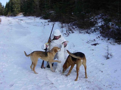 охотник с добычей и собаками