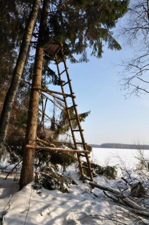 Лестница для охоты