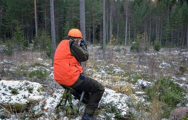 Поведение охотника в засаде