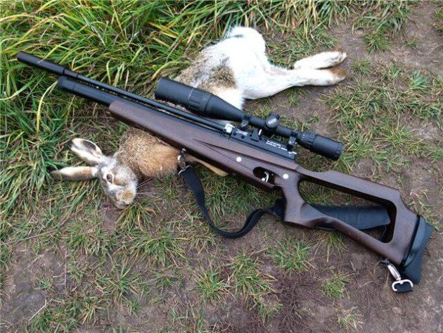 Особенности охоты с пневматическим оружием