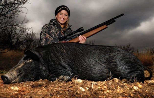 Выбор пневматического оружия для охоты без лицензии