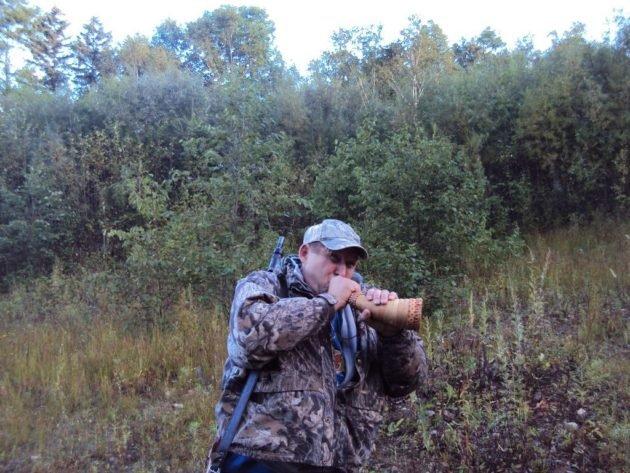 Использование ревы во время охоты на лося