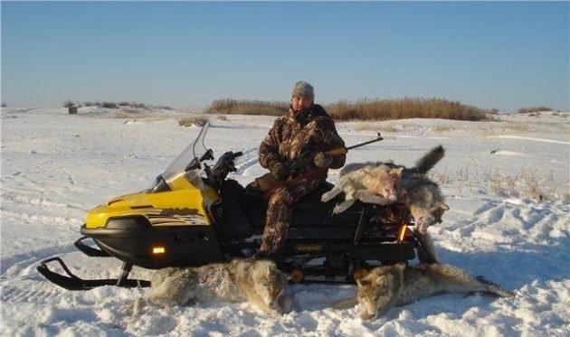 Использование снегохода для охоты на волков
