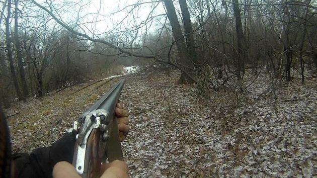 Для загонной охоты лучше подходит гладкоствольное оружие