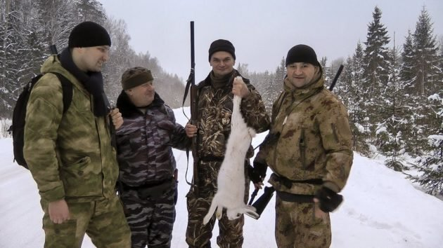 Загонная охота на зайца