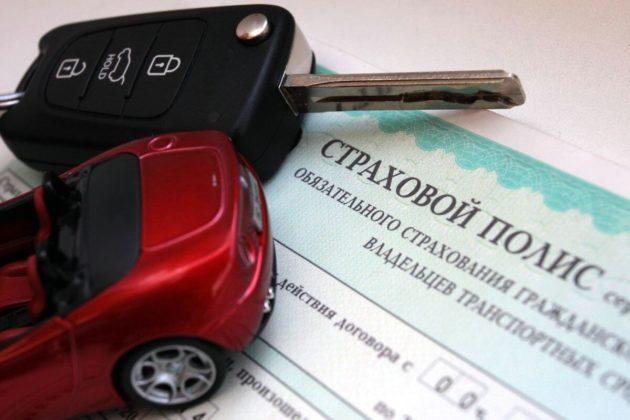 Страховые выплаты за повреждения автомобиля при ДТП с лосем