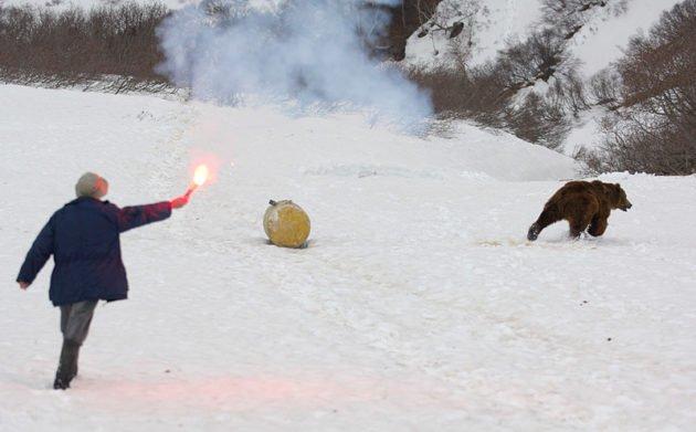 Отпугивание медведя огнем