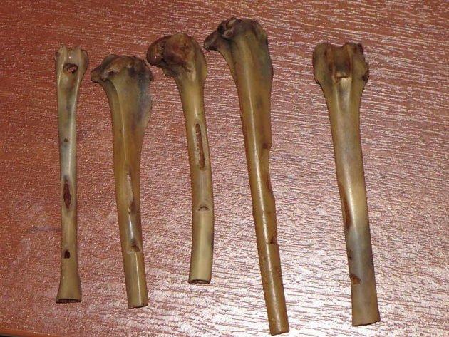 Самодельные из костей