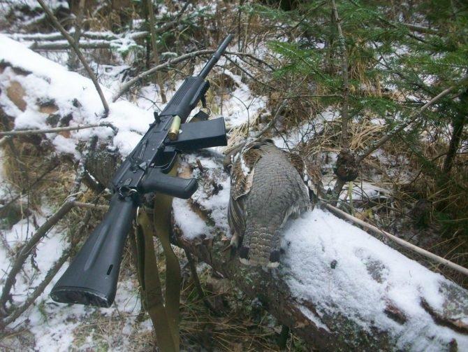 Гладкоствольное самозарядное ружье Сайга 20 предназначено главным образом для промысловой охоты