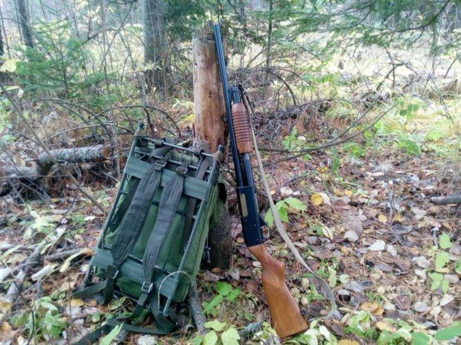 ИЖ-81 применяется как охотниками, так и охранными структурами