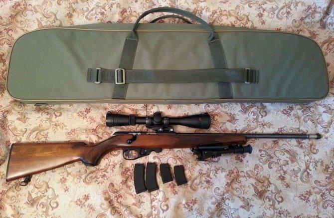 Огнестрельная винтовка с чехлом