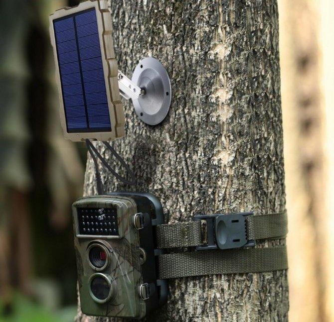 Охотничья камера с солнечной панелью