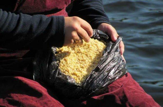 Прикормка рыбы салапинской кашей