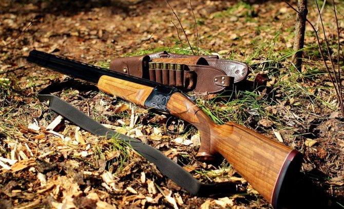 Российская двустволка иж-27