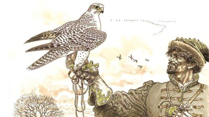 В Европе соколиная охота получила распространение в Средние века