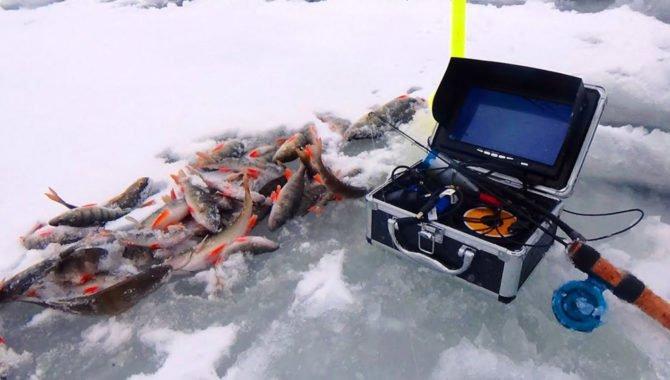 Видеооборудование для зимней рыбалки
