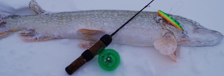 ловля щуки на раттлин зиммой и со льда