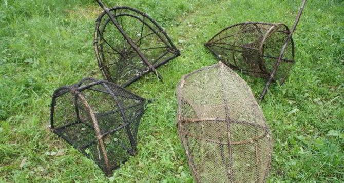сети для куропатки
