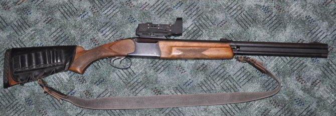 Комбинированная винтовка
