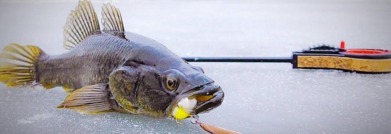 Рыбалка на ротана