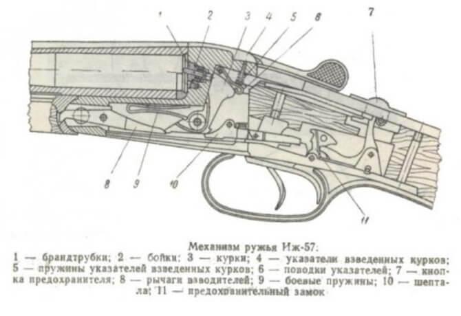 Ружье ИЖ-57 конструкция