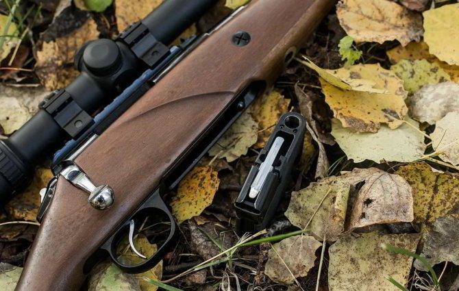 Охотничья винтовка Лось-145