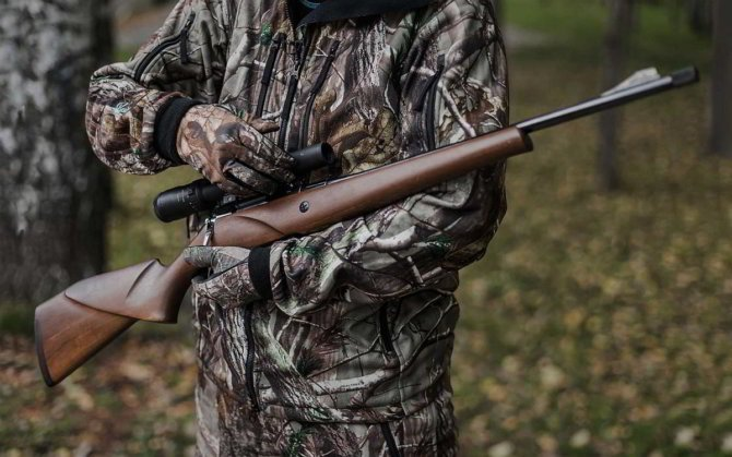 Охотник и Лось-145